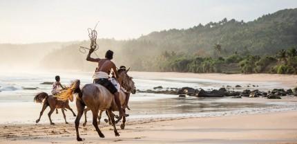 Local horse races on Sumba Island, eastern Indonesia
