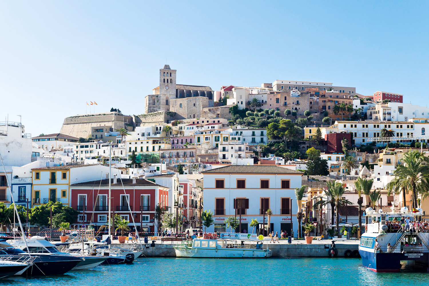 Best Restaurants Ibiza Town