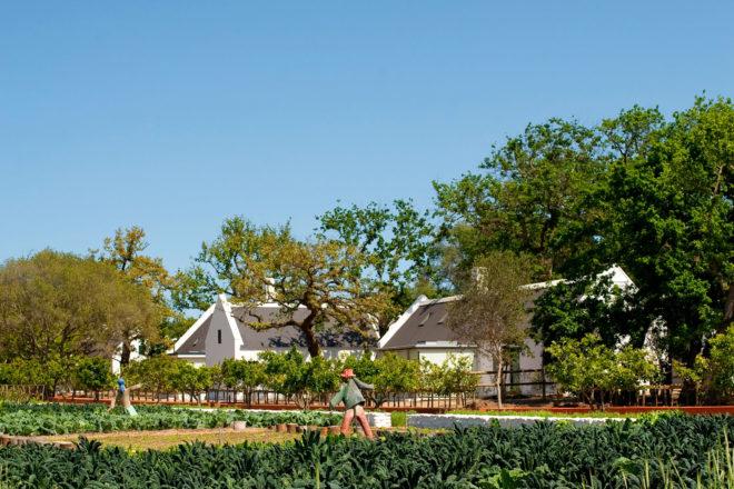 Babylonstoren farm hotel, South Africa.
