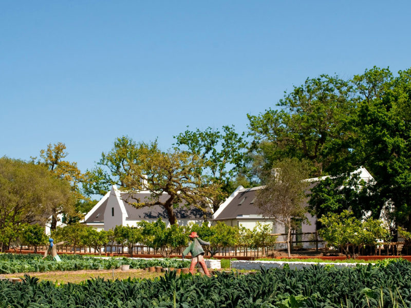 Babylonstoren farm hotel, South Africa.