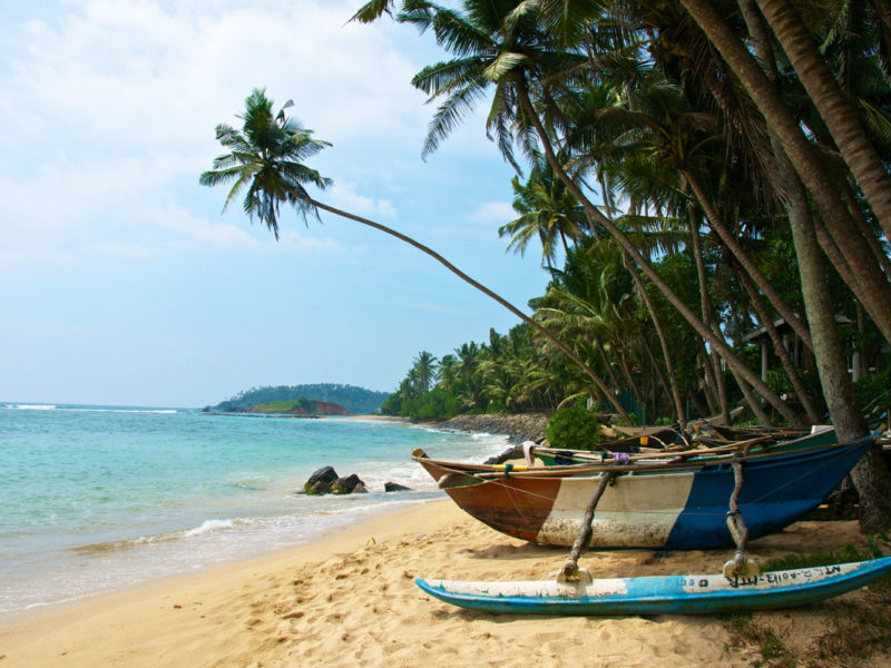 Windswept Mirissa Beach, Sri Lanka.