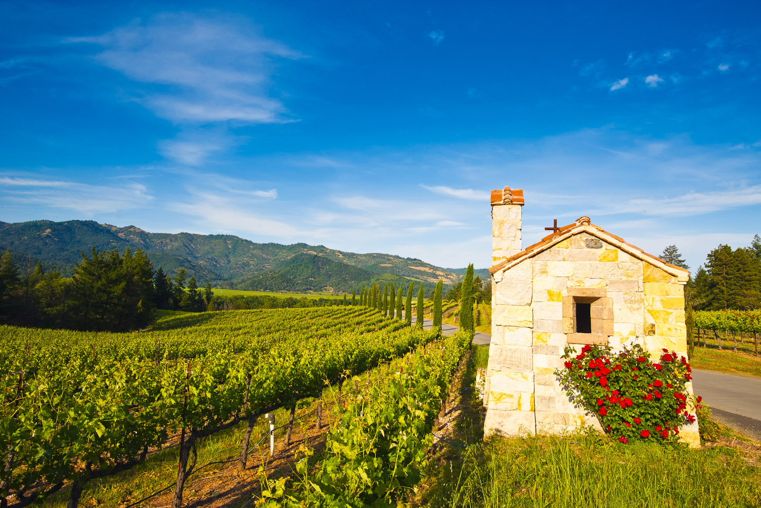 Welcome to California's wine country, Napa Valley.