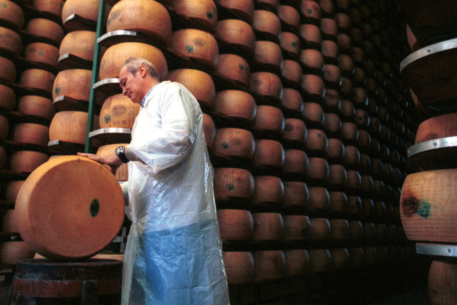 A consortium master checks the progress of the parmesan cheese for ageing in Parma, Italy.