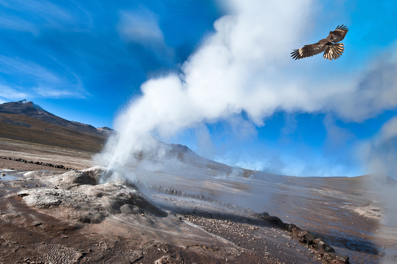 Iceland Holiday Northern Lights Blue Lagoon Geysers Reykjavik Short Break Weekend Travel moreover 54 Take In Sunrise At El Tatio Geysers In Chile furthermore Futuristic House Designs additionally 7956217826 additionally Geothermal Douche. on geothermal