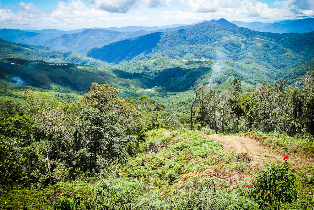 kokoda track Challenge your mind, body and soul while hiking the kokoda trail in new guinea surrounded by dense greenery, glistening rivers and incredible views, it is hard to believe that just over 70 years ago the 96 km kokoda trail was the site of one of the bloodiest battles for australian troops in world.