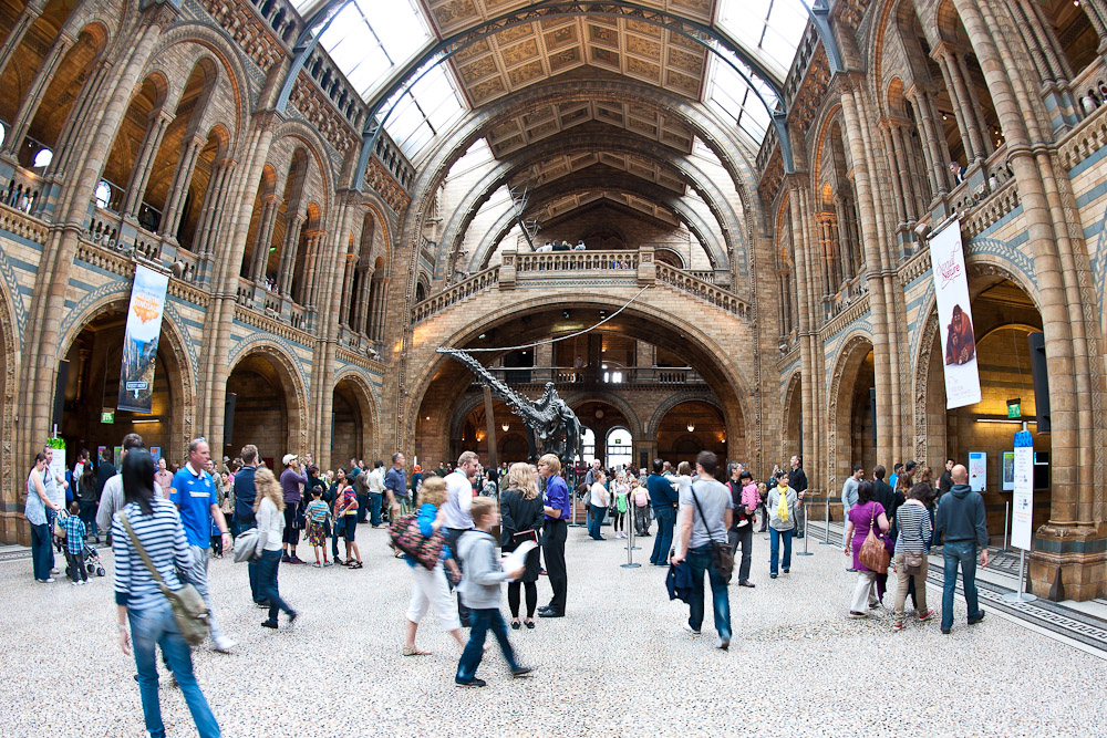 Hotels Around Natural History Museum London
