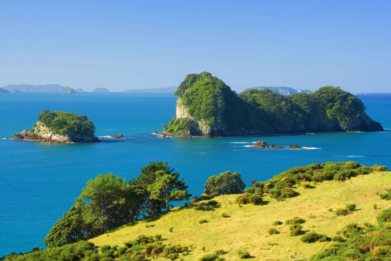 Coromandel town and its bay of green and blue hues, dotted with islands and capes.