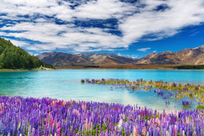 Lake Tekapo in New Zealand.