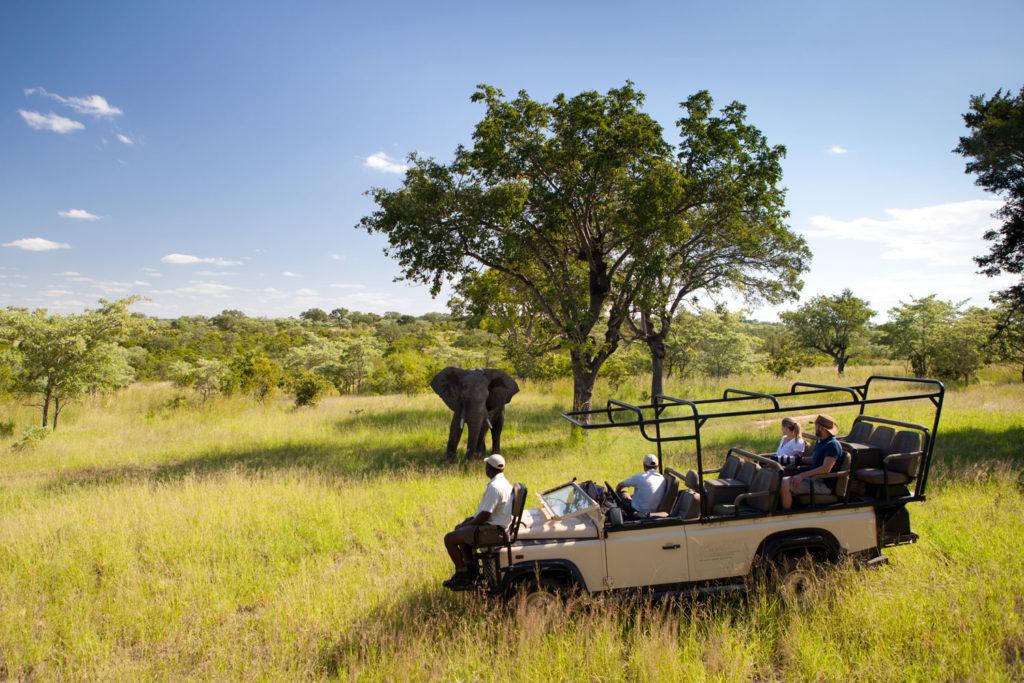 Ulisaba's location next to Kruger National Park makes it an ideal destination for spotting Africa's famed wildlife.
