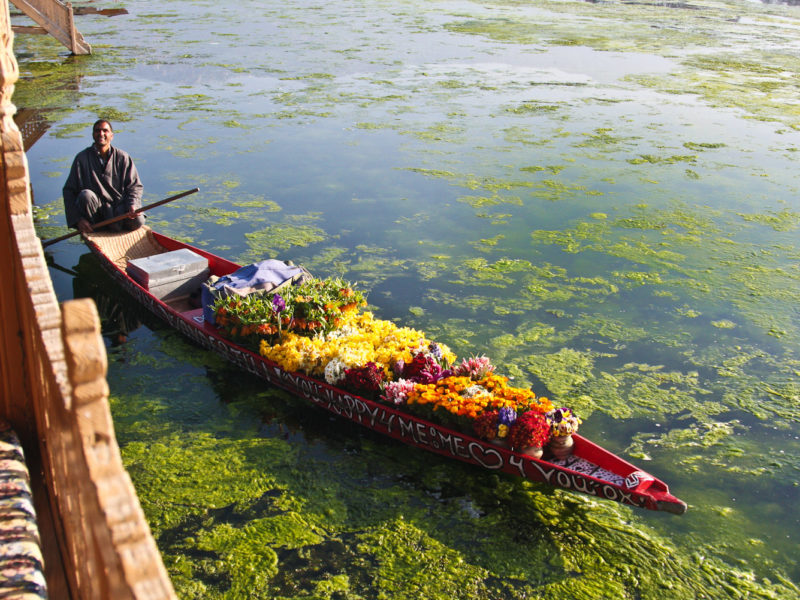 A flower seller on Kashmir's Nagin Lake.
