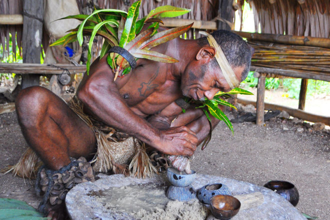 Chief making kava at Leweton Cultural Village, Vanuatu.