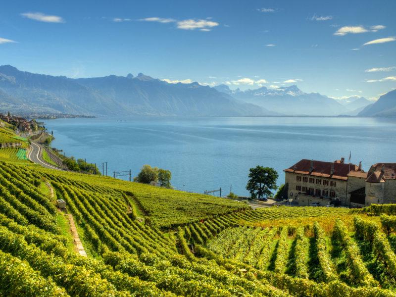 Lavaux Vineyard Terraces in Switzerland.