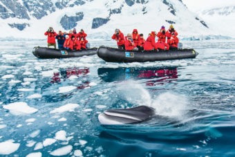 Lindblad Antarctic program.