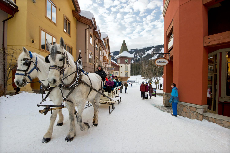 Ride in a horse-drawn sleigh in Sun Peaks