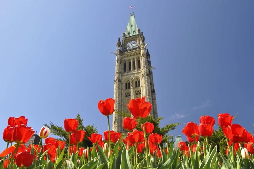 Canadian Tulip Festival in Ottawa, Canada