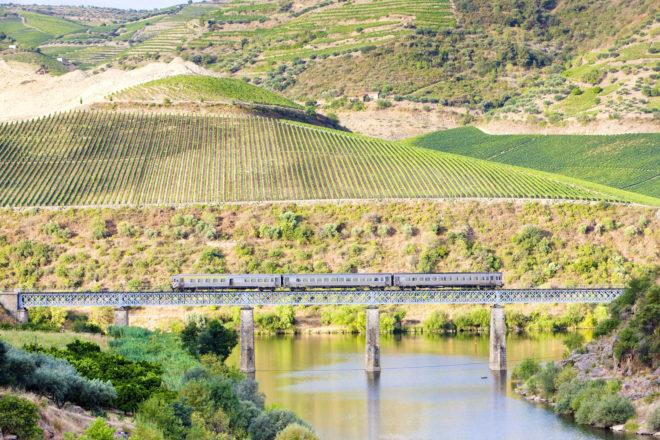 Douro wine region, Portugal.