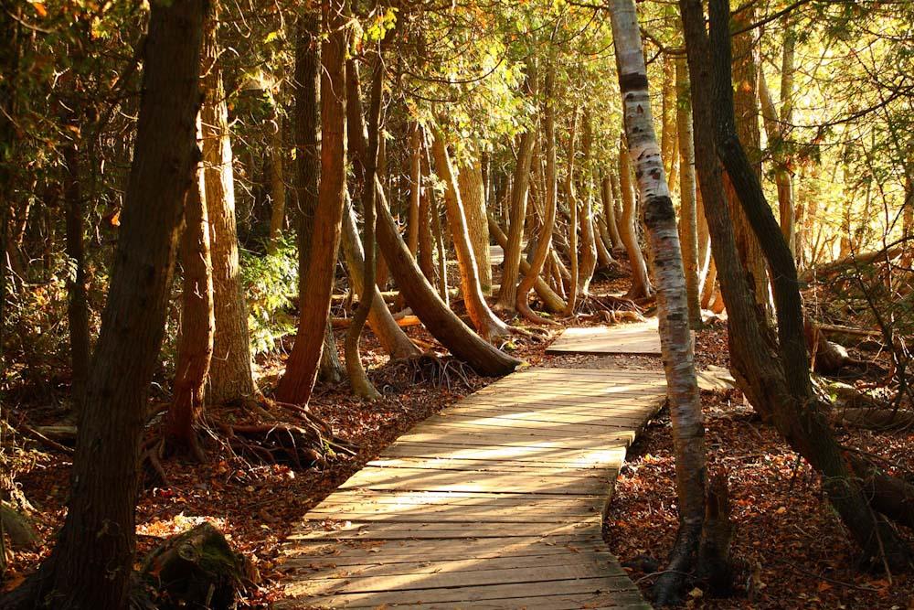 Bruce Peninsula National Park Ontario hiking walk
