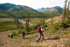 Sheep Creek Base Camp Ivvavik National Park Canada hike trek camp holidays