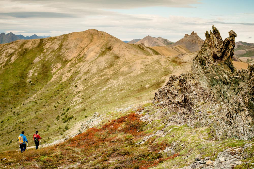 ivvavik national park canada - photo #10