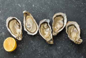 Fresh oysters lemon on celebrity chef cruise