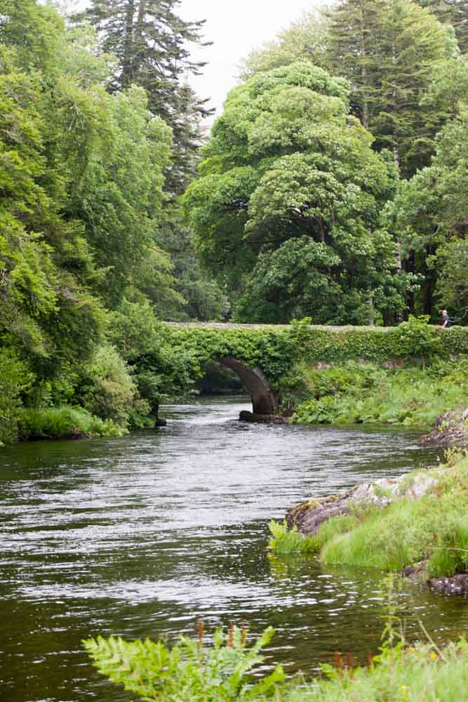Grand castle fly fishing in ireland a novice 39 s guide for Fishing in ireland