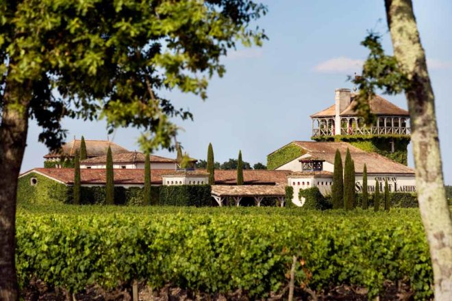 Bordeaux vineyard tasting tours