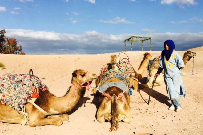 7-day Exotic Moroccan culinary adventure