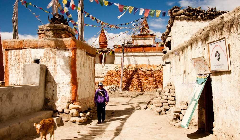 Nepal mustang history