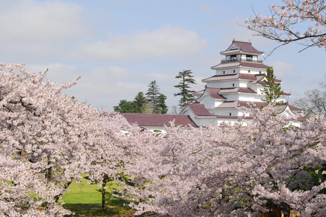 Take in the beauty of this amazing historical site at the Tsuruga-Jo Castle