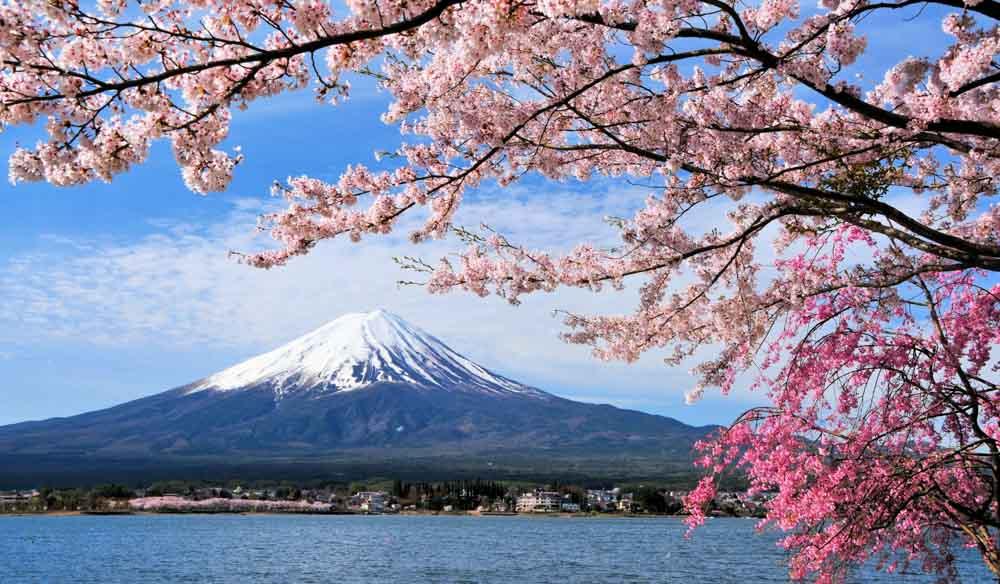 Japan Mount fuji hikes travel