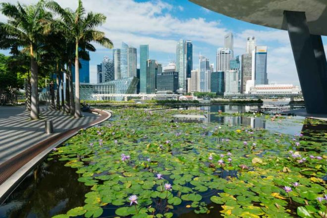 Art Science Museum skyline singapore garden