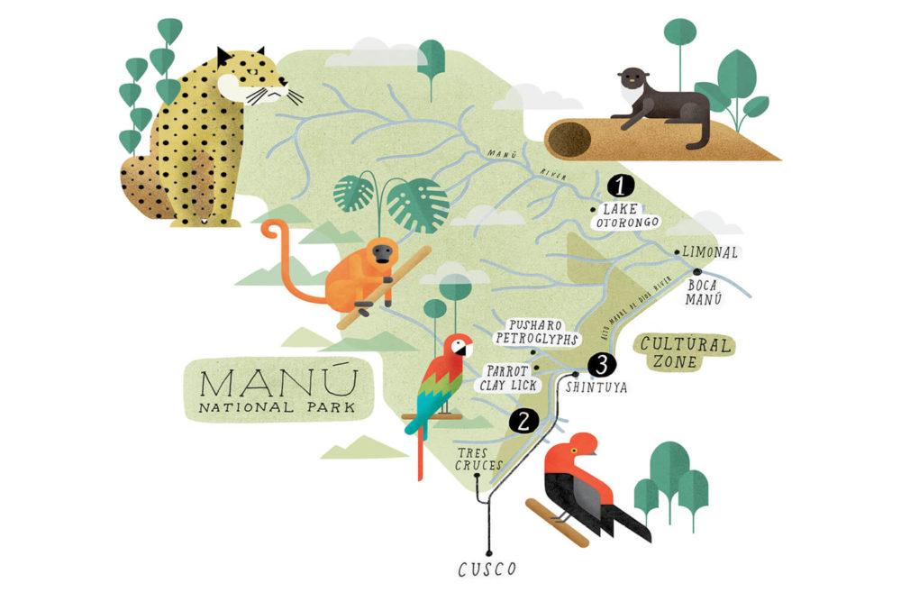Manu National Park. Illustration: Mike Rossi
