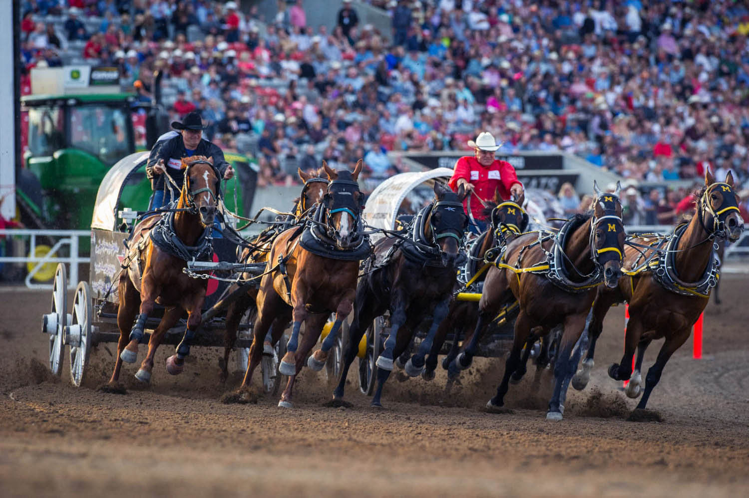 Is Calgary Stampede Really The Greatest Show On Earth
