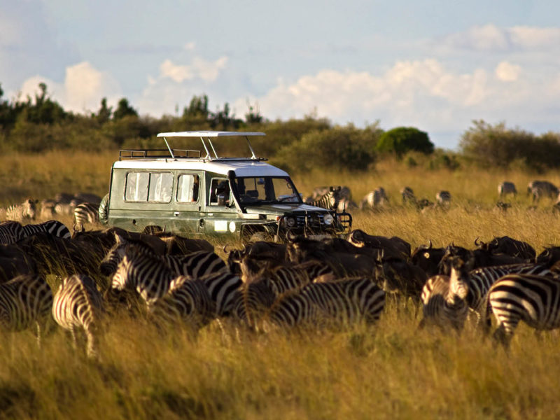 what makes a good African safari truck