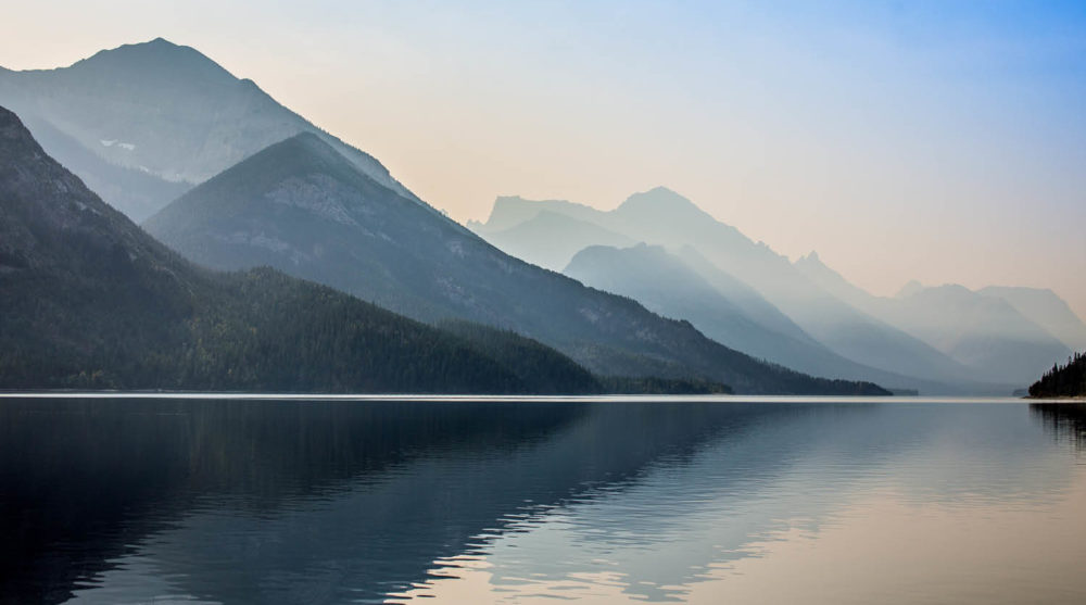 wildlife land culture history fauna flora rocks lakes sights nature Waterton Lakes National Park