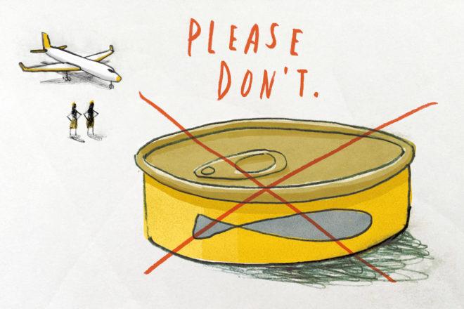 travel planes etiquette