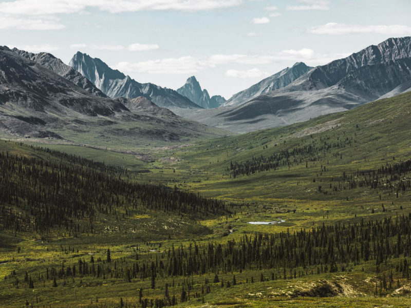 Tombstone Territorial Park its name
