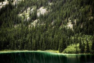 Emerald Lake aqua Yukon