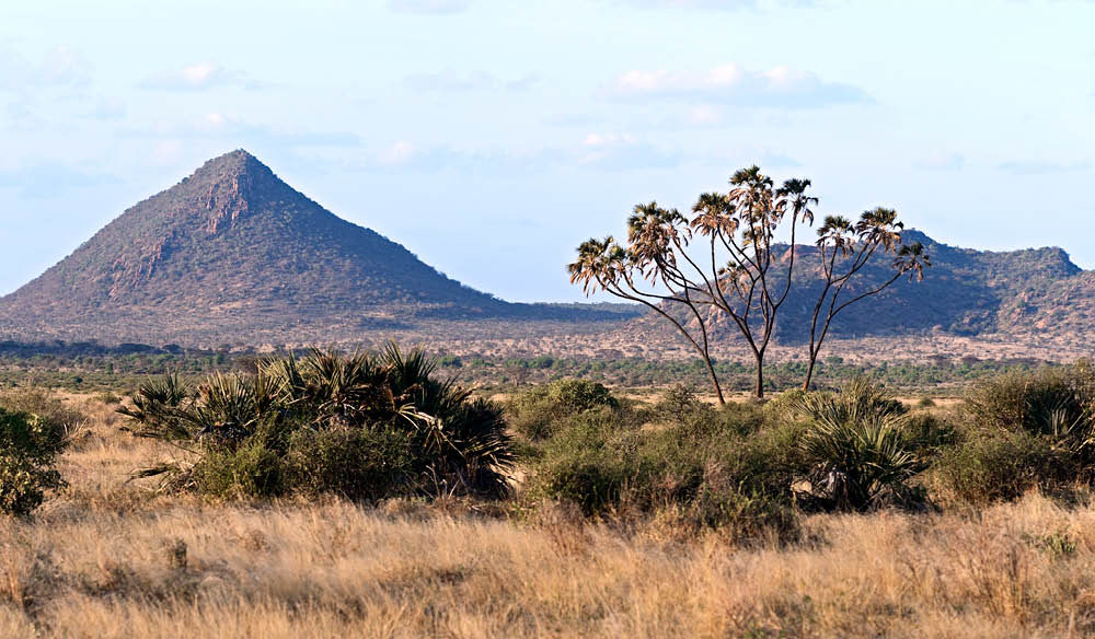 Samburu National Reserve Kenya luxury safari wildlife