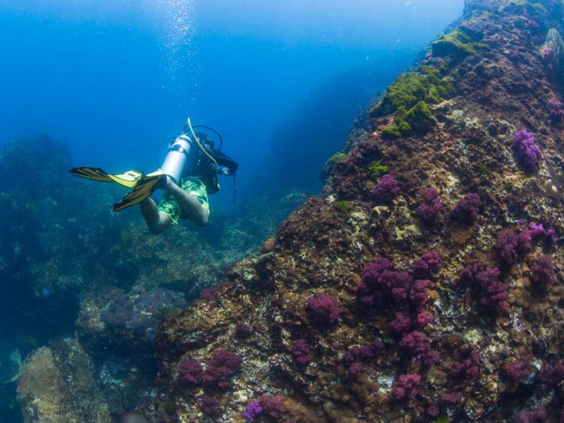southern Thailand scuba diving snorkelling dive snorkel
