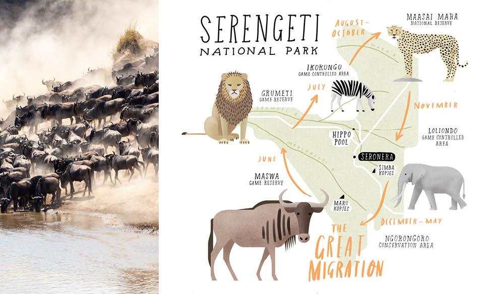 Serengeti National Park >> Serengeti National Park 7 Must Sees And Do S International Traveller