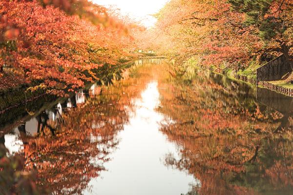 Hirosaki Castle river and trees