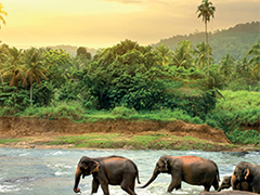Adventureworld Sri Lanka