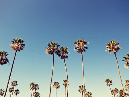 Los Angeles, Most Incredible Cities