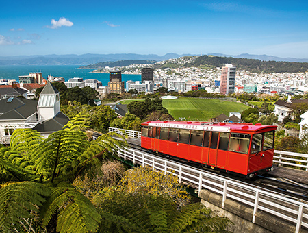 Wellington, Most Incredible Cities
