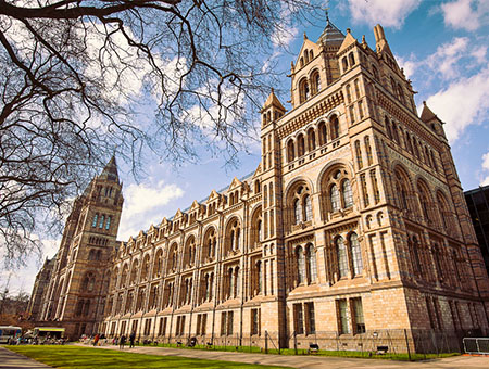 Natural History Museum London, England