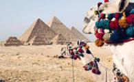 CostSaver Egypt Deal