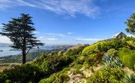 Gardens of Larnach NZ