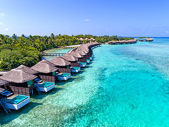 Maldives Deal