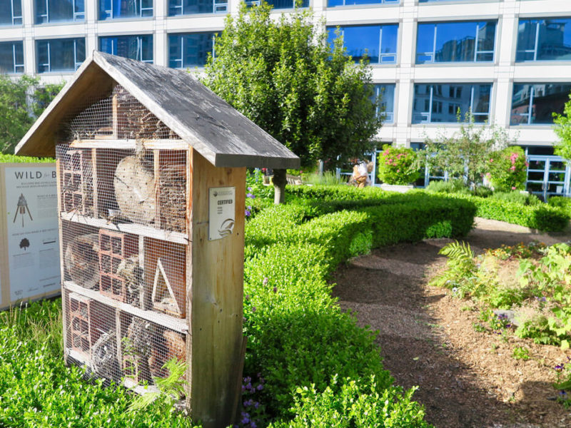 Bee Hotel Vancouver